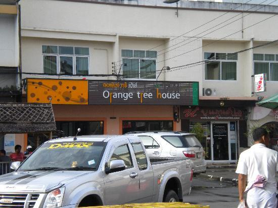 Orange Tree House: From the outside!