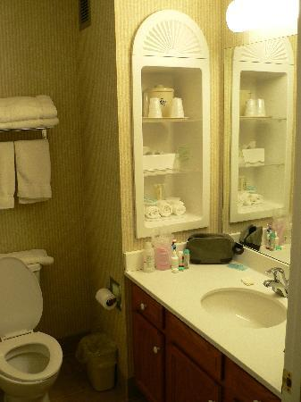 Holiday Inn Express Hotel & Suites White River Junction: Nice bathroom
