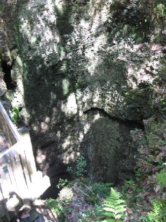 Falling Waters State Park: Sinkhole