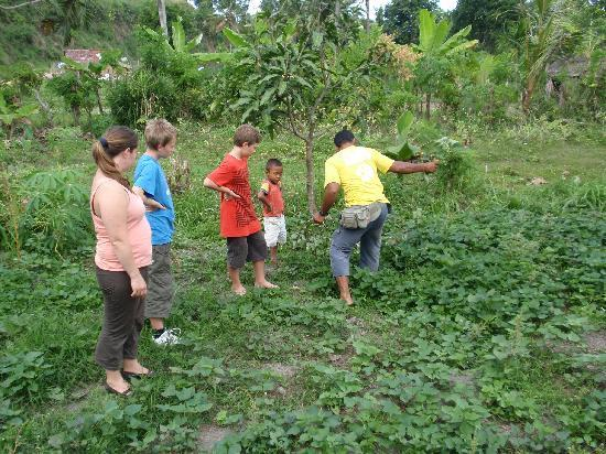 Side By Side Organic Farm: Farm trip with Ketut