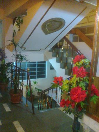 Hotel Mohit: Staircase