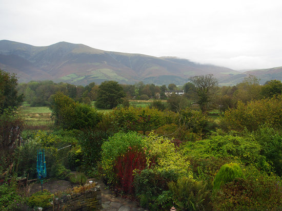 Hillside: Looking over the garden with autumn colours.