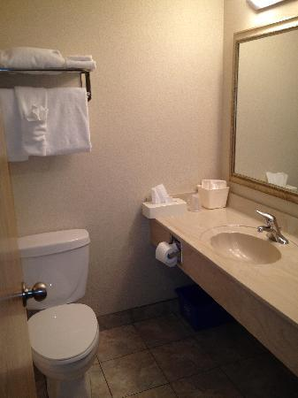 Holiday Inn Hotel & Suites Regina: Bathroom 233