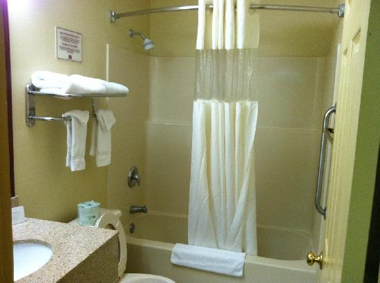 Quality Inn & Suites: Decent sized, clean bathroom.  Good water pressure.