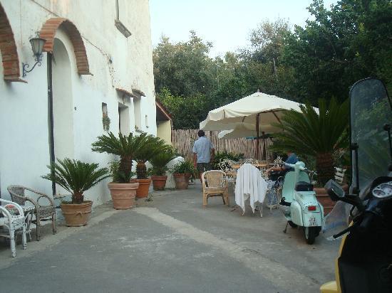 Mami Camilla: The courtyard