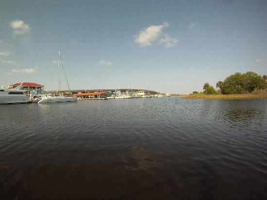Jax Surf Training: Jacksonville, Florida paddleboarding.