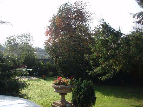 Kerrington House: Backyard