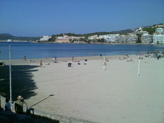 Plazamar Serenity Resort: The Beach