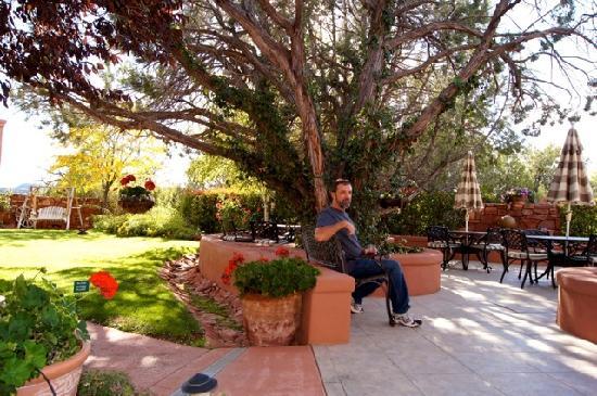 Casa Sedona Inn: B&B back patio