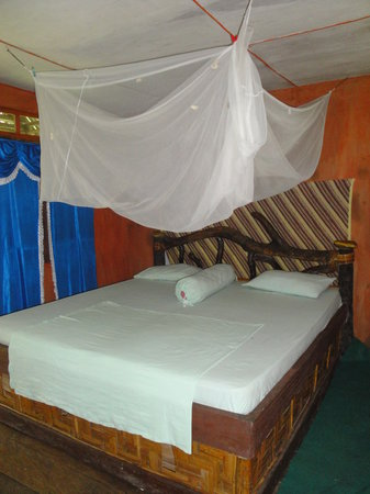 Mega Inn - Tangkahan : Room with good mosquito net