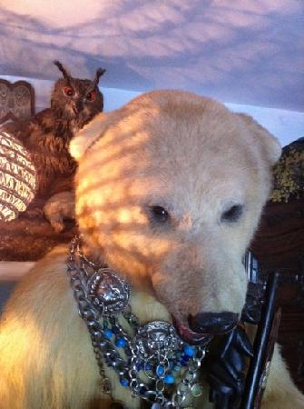 Aiguaclara Hotel: Family pets?