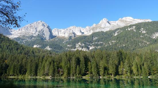 Albergo Ristorante Rifugio Lago Rosso: adiacenze (Lago di Tovel)