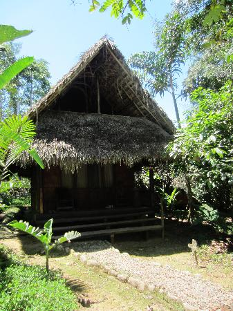 Cotococha Amazon Lodge : Cabana 4