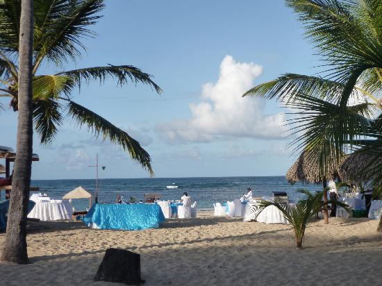 Our Beautiful Beach Reception At Dreams Picture Of Punta