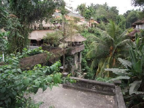 Nefatari Exclusive Villas: Ubud scenery
