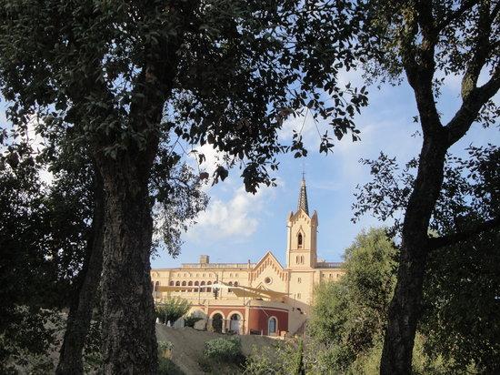 Sant Pere del Bosc Hotel & Spa: El hotel entre la arboleda.