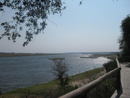 Chobe Game Lodge: View from the Boardwalk