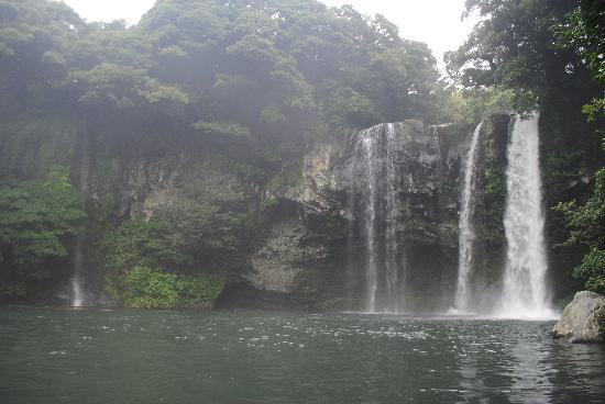 โรงแรมลิตเติล ฟรานซ์: Waterfall Nearby hotel