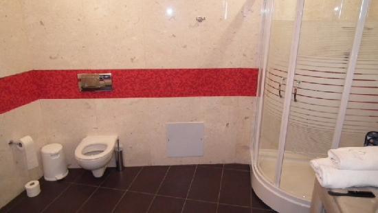 Salle de bain-toilette et coin douche - Photo de Petit Palace ...