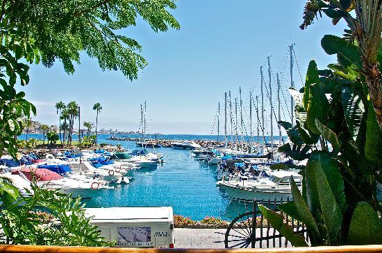 Club Gran Anfi: Marina