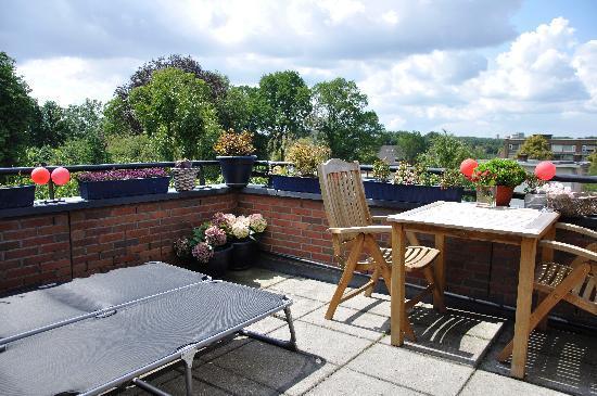 B&B Vechtoever : Roof terrace
