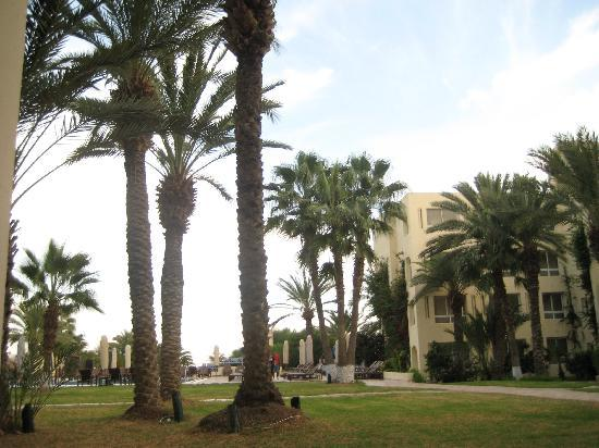 Hotel Paradis Palace: the garden