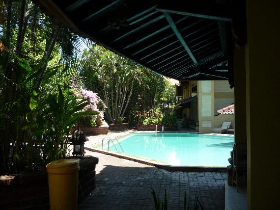 Bali Coconut Hotel: La piscine