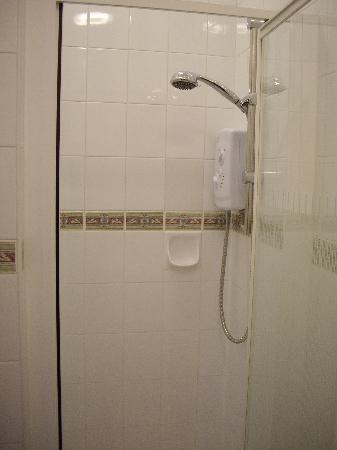 Danecourt Lodge: shower
