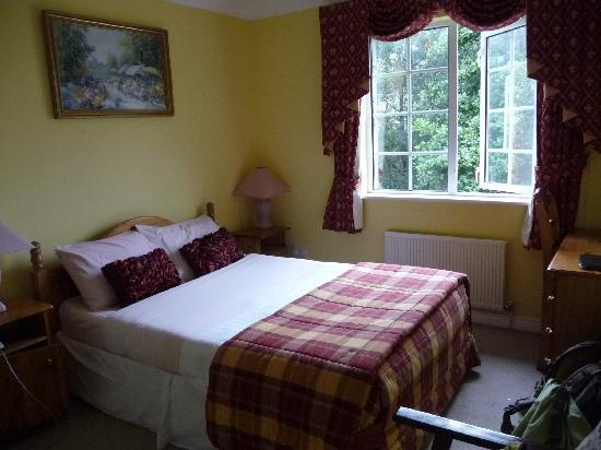 Connemara Country Lodge Bed and Breakfast: Vue de la chambre