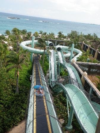 The Reef Atlantis, Autograph Collection: Power Tower slides