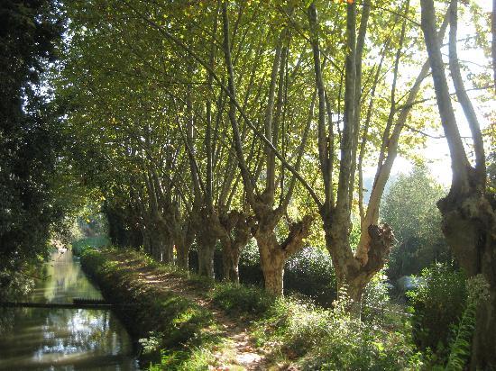 Canal path