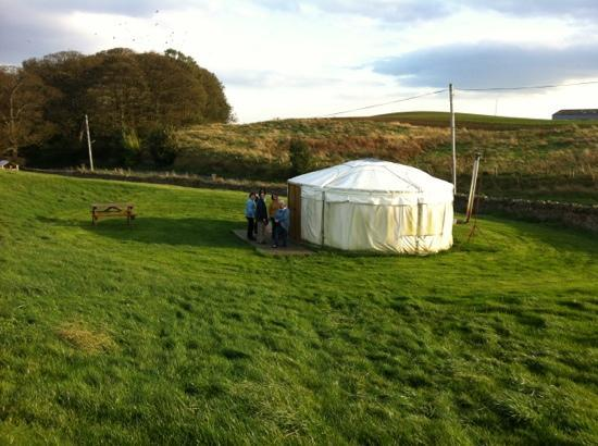 Pot-a-Doodle-Do: 8 person yurt which we stopped in
