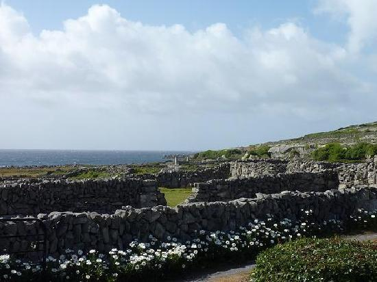 Inishmann, Ireland: Walking west of the suites.
