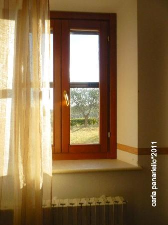 Il Giardino degli Ulivi: La vista dalla camera da letto