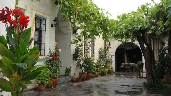 Aravan Evi Restaurant : ブドウの木や可愛いお花も♥
