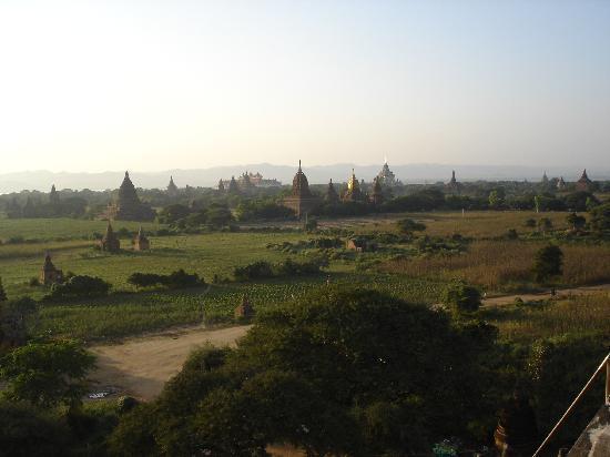 Birmanie (Myanmar) : Centro arqueológico de Bagan. Cientos y cientos de pagodas de todos los tamaños.