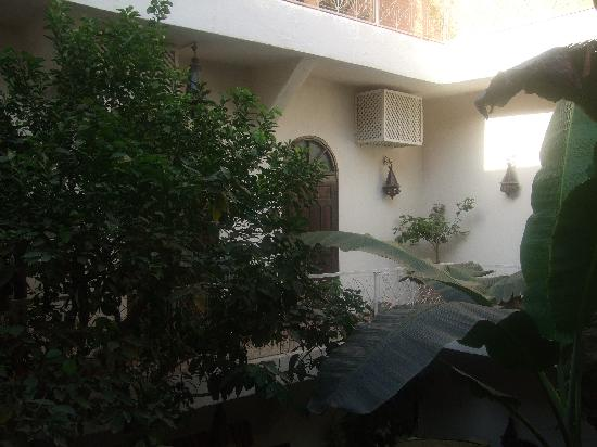 Riad Dar Tayib: The courtyard