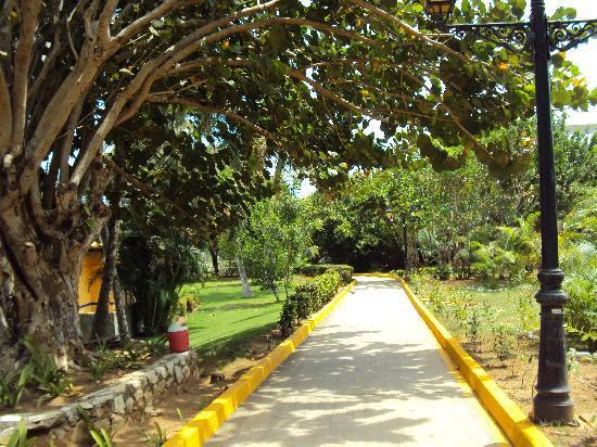 Hesperia Playa El Agua : hotel roads