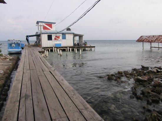 Gunter's Ecomarine : Dive Shope