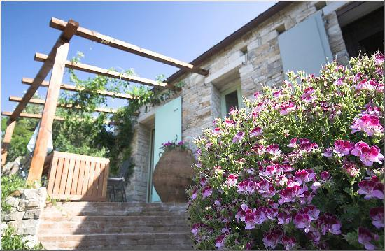 Zakspitaki B&B: The cottage