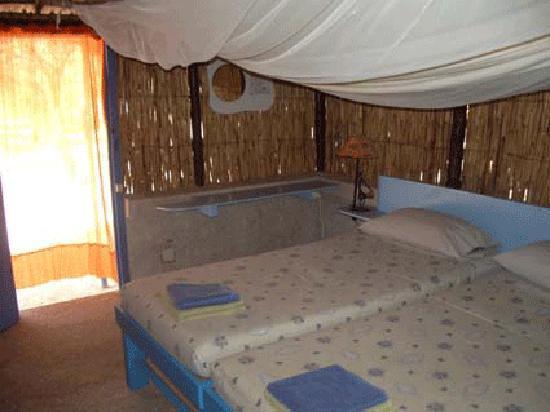 Hakuna Lodge: case