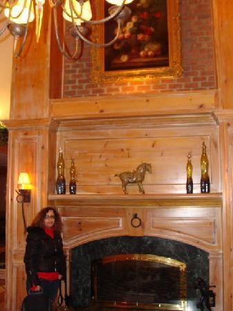Homewood Suites Alexandria: lobby