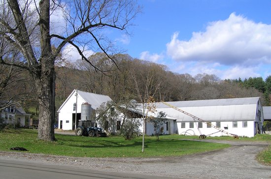 Robb Family Farm : The dairy barn