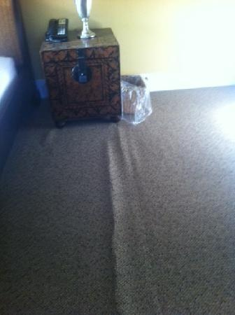 The National Hotel: Carpet Problems Throughout...