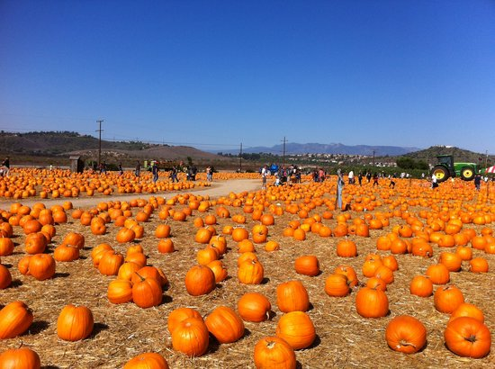 Underwood Family Farms - Moorpark