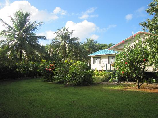 Atiu Homestay: The garden