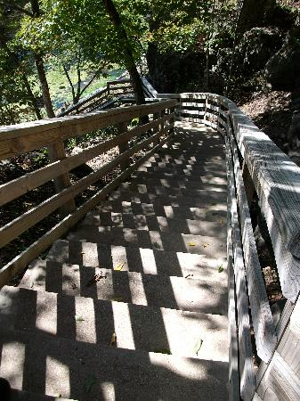 Eureka Springs Gardens: Their Stairs...they have ramps if you would rather not take the stairs.