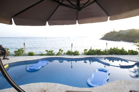 Sea Shore Allure: pool and view of Turner Bay