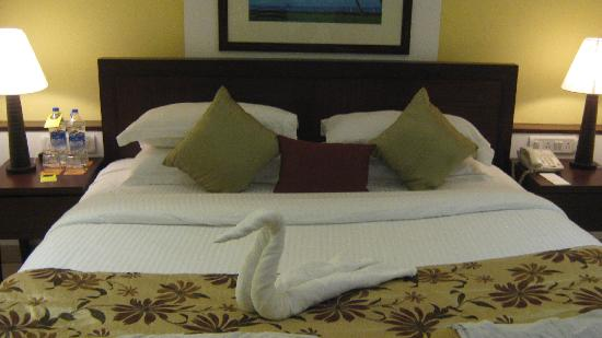 Citrus Goa: Towel swan.. Cute!