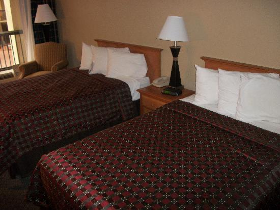 Quality Inn: standard 2 double bed room